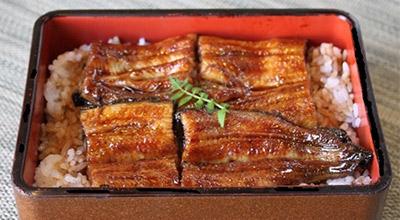 Ibusuki Onsen eel